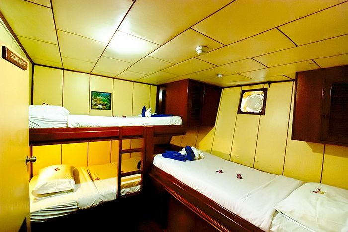 Deep Andaman Queen standard lower deck triple cabin