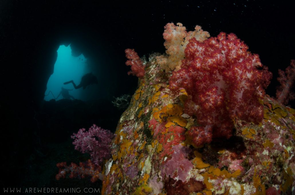 Diving Mergui archipelago