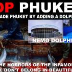 Stop Phuket Dolphinarium