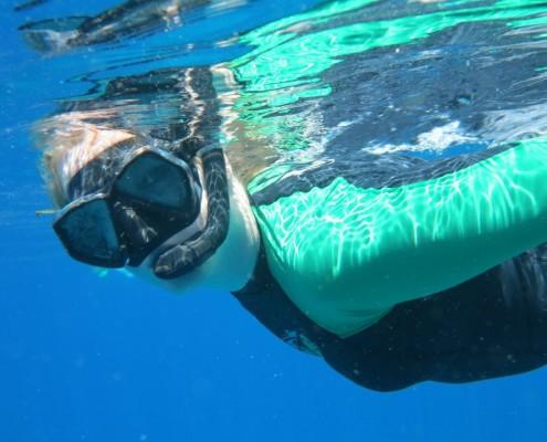 Burma snorkeling